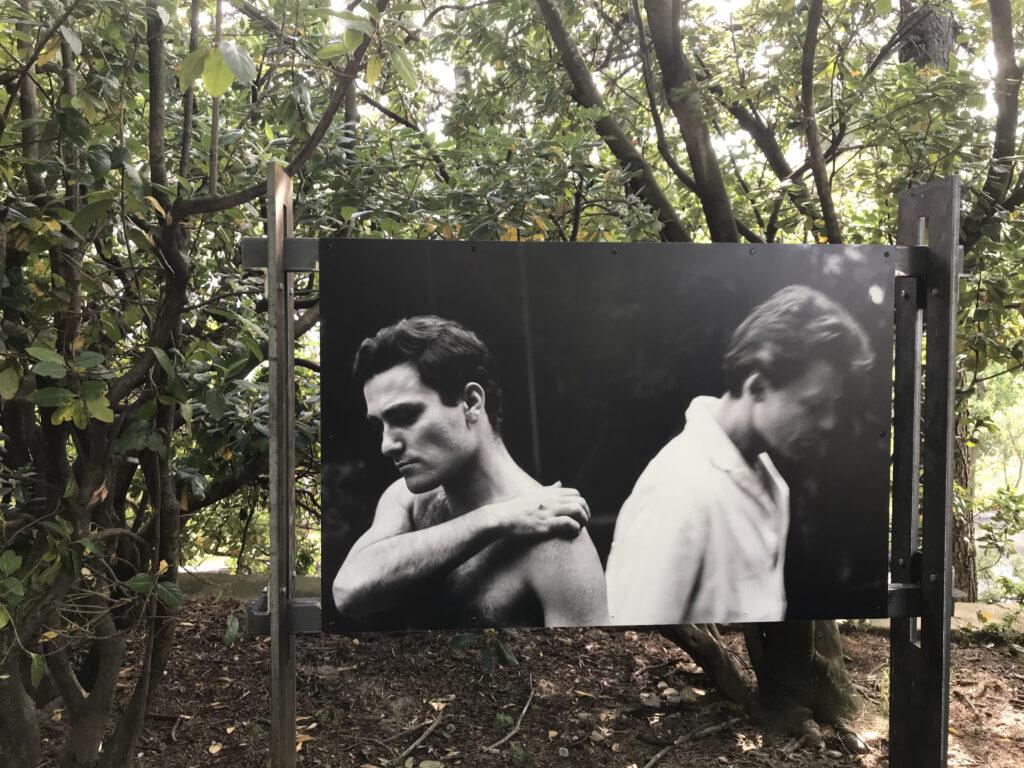 Les Caprices de Marianne, en répétition Roger Mollien et Gérard Philipe Verger Urbain V – Avignon – 1958 Photographie Agnès VARDA © succession varda